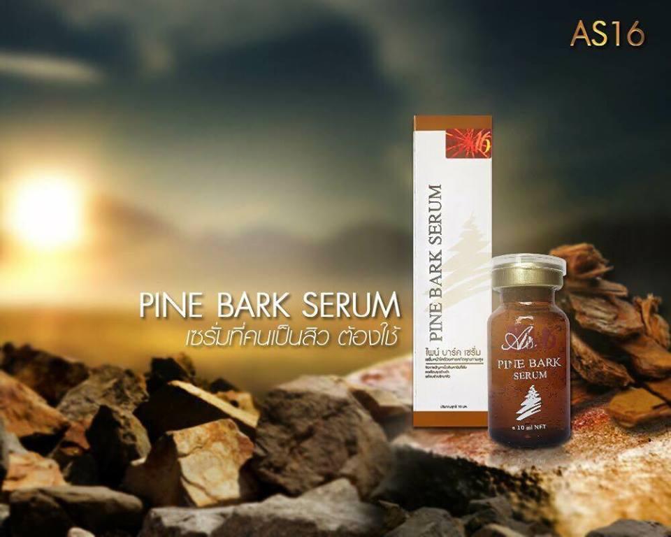 AS16 Pine Bark Serum 10 ml. เซรั่มเปลือกสน