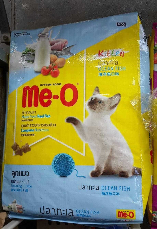 me-0 kitten ปลาทะเล 6.8kg 590รวมส่ง