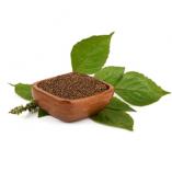 Perilla Seed Oil 100 mg. / น้ำมันเมล็ดงาสกัด 100 มิลลิกรัม