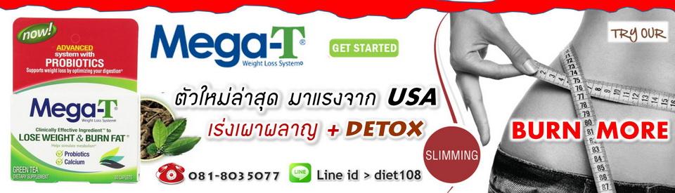 diet108