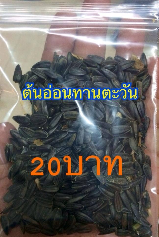 เมล็ดทานตะวันอ่อน เมล็ดดำ(ถุงเล็ก)