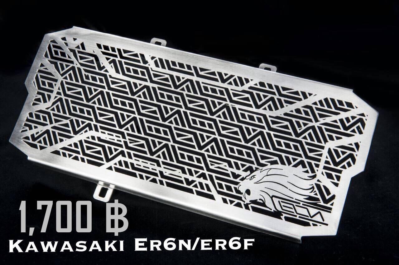 การ์ดหม้อน้ำ Leon for ER6N, Ninja 650